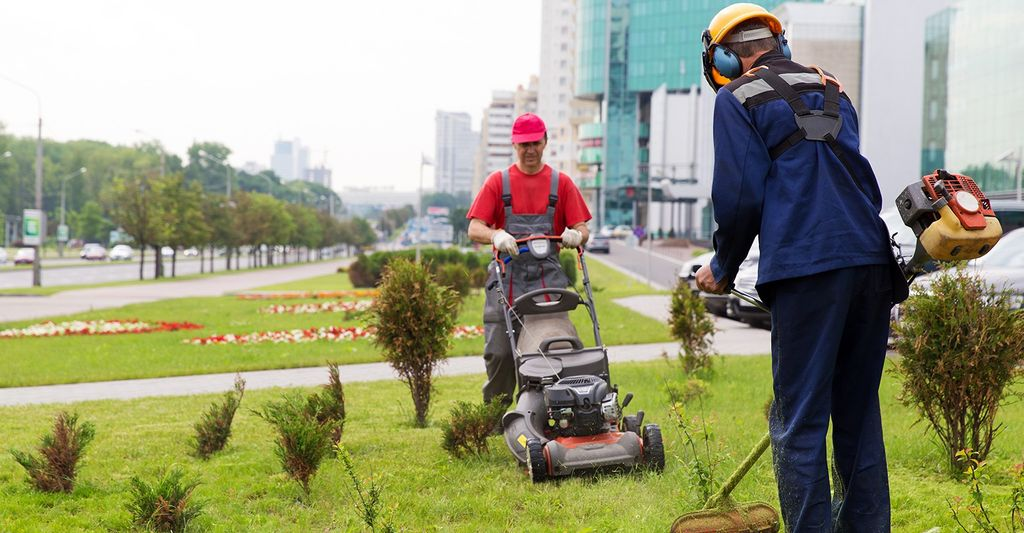 Find a lawn care professional near you