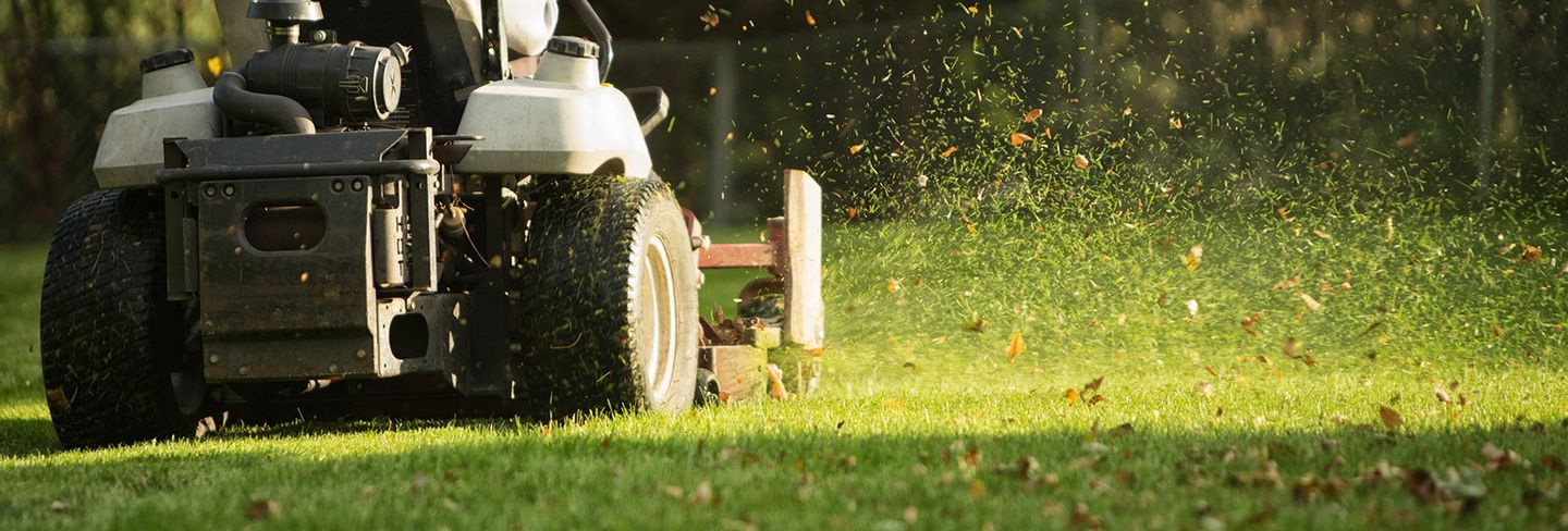 The Best Lawn Care