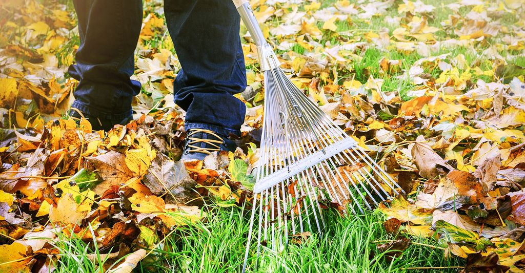 A leaf raking professional in Huntington, GA