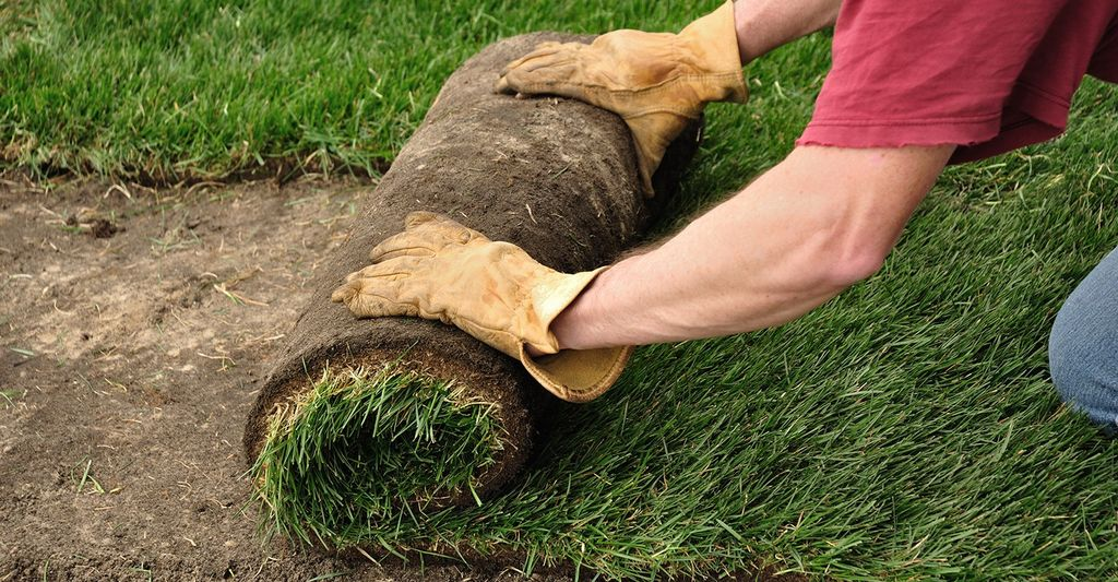 Find a sod professional near Atlanta, GA
