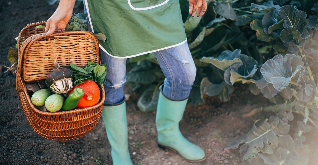 Find an organic gardener near you