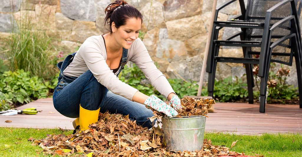 Find a leaf vacuum professional near Athens, GA