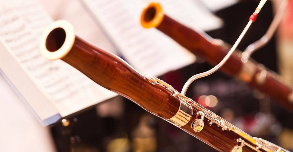 Find a Bassoon Instructor near Jersey City, NJ