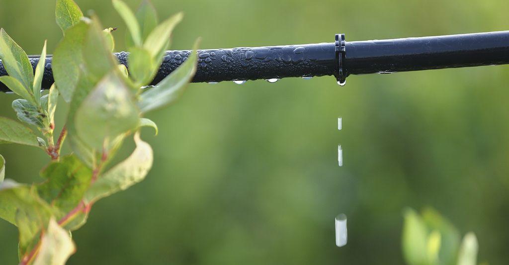 Find a drip irrigation system installer near Atlanta, GA
