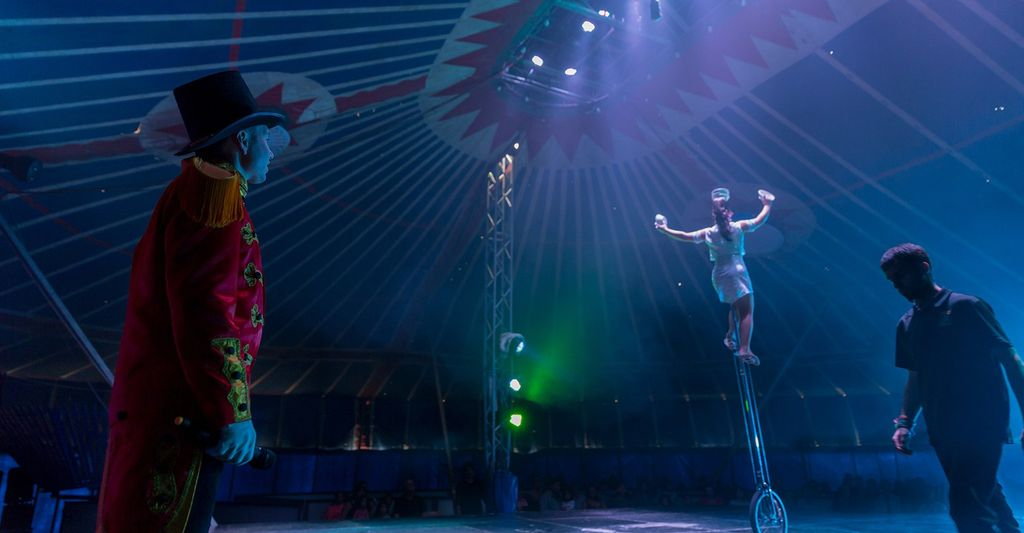 Find a Circus Act Professional near you