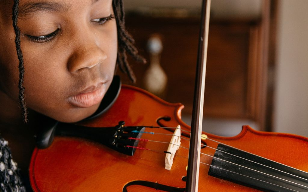 Violin lessons cost