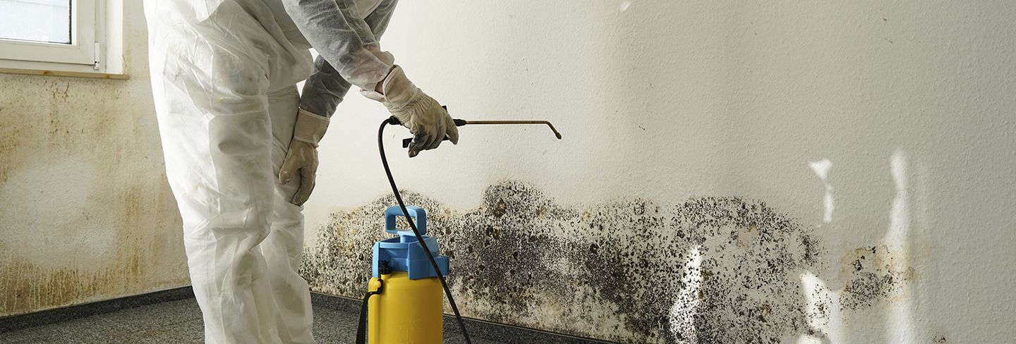 2020 Average Mold Inspection Cost