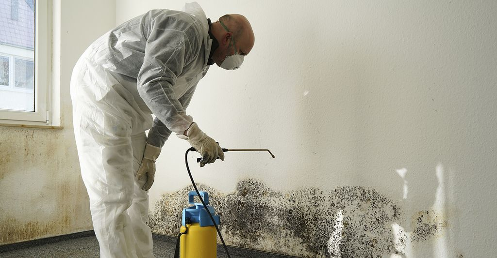 A mold remediation professional in Miami Beach, FL