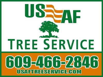 Avatar for USAF Tree Service Skillman, NJ Thumbtack