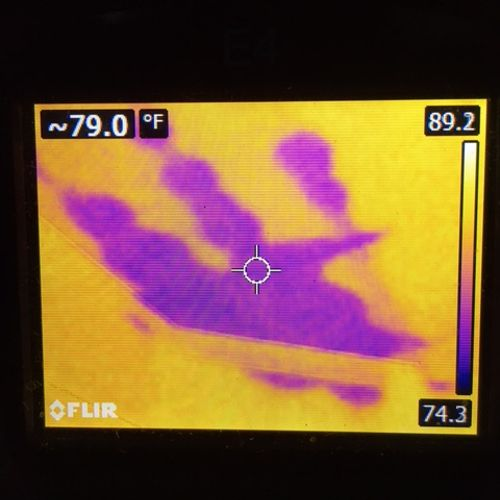 Now see the water in the ceiling in the thermal image.