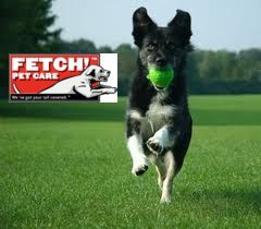 Fetch! Pet Care - - We've Got Your Tail Covered!