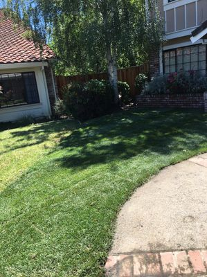 Avatar for J&G landscape service Martinez, CA Thumbtack