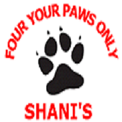 Avatar for Four Your Paws Only / Shani's Tarzana, CA Thumbtack