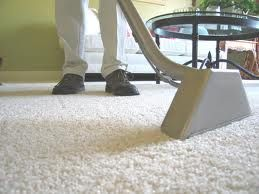 The Steam Master Melo Carpet Cleaning