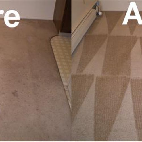 Hot water extraction/steam cleaning is the industry's best recommended method for carpet restoration.