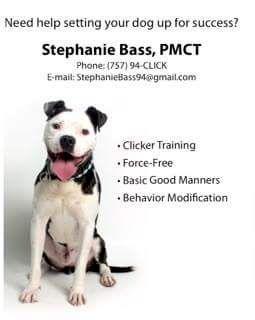 Stephanie Bass