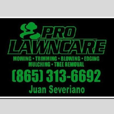 Avatar for Pro Lawncare