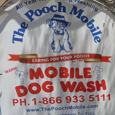 Avatar for The Pooch Mobile Glendale, AZ Thumbtack