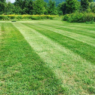 Avatar for Bernard's Lawn Care Greeneville, TN Thumbtack