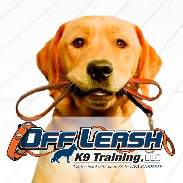 Off Leash K9 Training, Pittsburgh