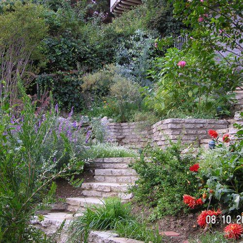 An overgrown hillside becomes an amazing walk-thro garden with terraces & garden stairs!