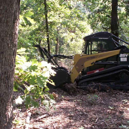 the Bull Hog grinder/mulcher attachment makes quick work of underbrush, decaying logs, and sapplings
