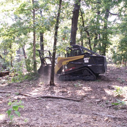 prepping residential lot for sale, increase the value of the lot.