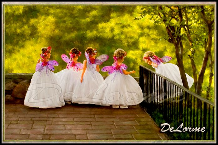 DeLorme Photography and Storybook Weddings