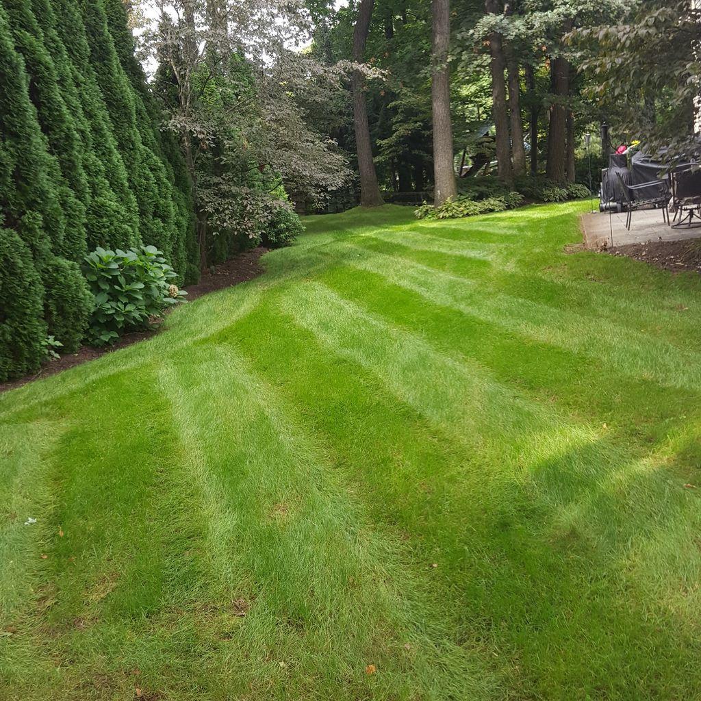 Lawncare Landscape Solutions llc.