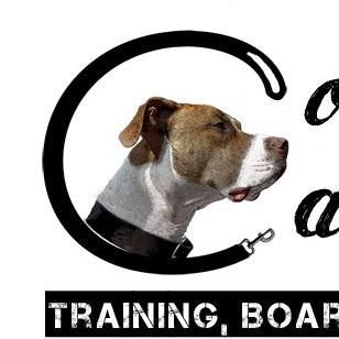 Complete Canine Training, Boarding & Behavior S...