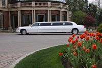 Avatar for Classic Coach Limousine