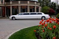 Classic Coach Limousine