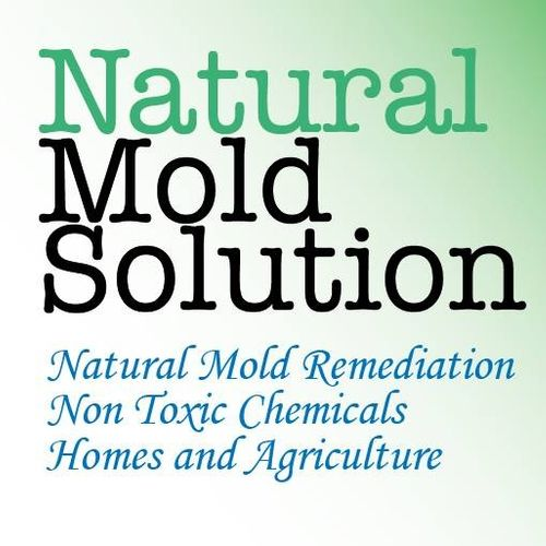 a safe way to get rid of mold
