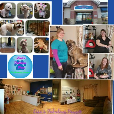 Avatar for Lisa's Fabulous Paws Cottage Grove, MN Thumbtack