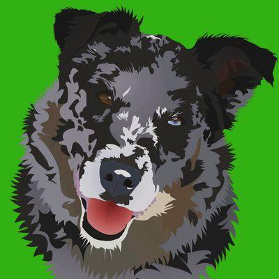Avatar for Pepper Dog Training Greer, SC Thumbtack