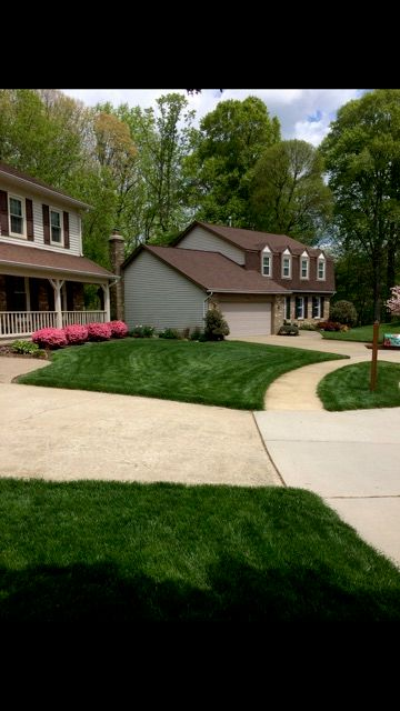 Yankee Doodle Landscaping