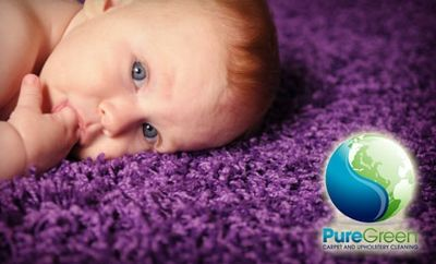 Avatar for PureGreen Carpet Cleaning