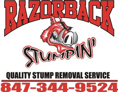 Avatar for Razorback Stump Removal Palatine, IL Thumbtack