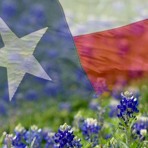 Serving North Texas