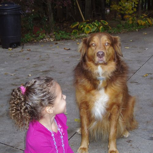 Have small children?  We help teach dogs and kids to get along safely.