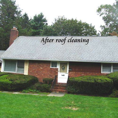 In a matter of hours we can make your roof look new again.
