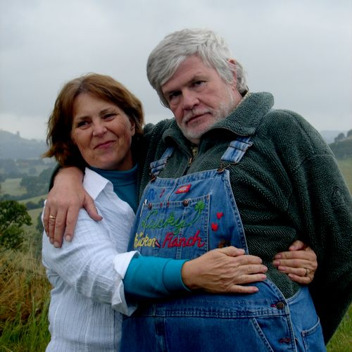 Mike and Amy give free bankruptcy consultations