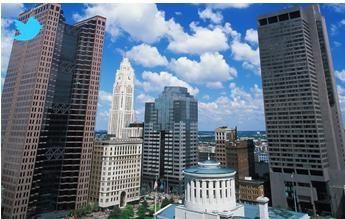 Central Ohio Websites