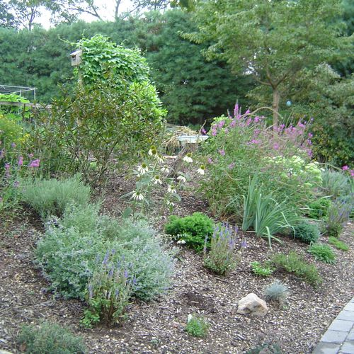 Landscape design, installation and maintenance available. Hard-scaping as well.