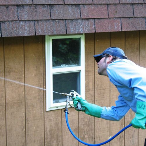Residential Pest Control for your Home