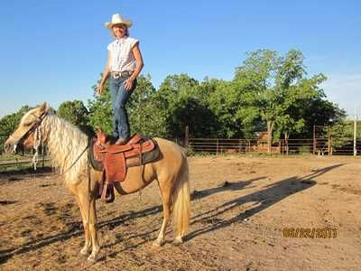 Do you trust your horse? Sure Ray 5 year old Missouri Fox Trotter for sale.