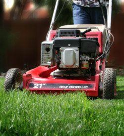 Bob's Lawn & Landscape Maintenance