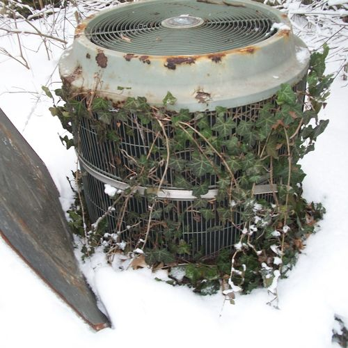 This air conditioner compressor will not work very well. The vines prevent the heat from leaving the unit