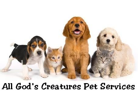 All God's Creatures Pet Services