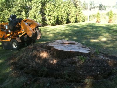 Avatar for The Lawn Ranger Landscaping & Pond Co. Smithtown, NY Thumbtack